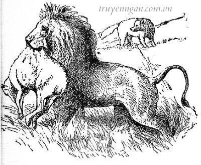 Đàn cừu và bầy sói